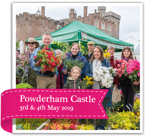 Toby's Garden Festival, Powderham Castle